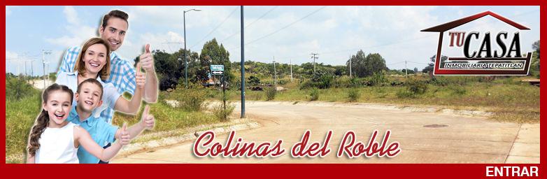 banner-colinas-del-roble